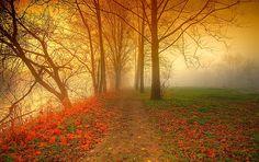 """""""Tobacco road"""" by George Saad"""