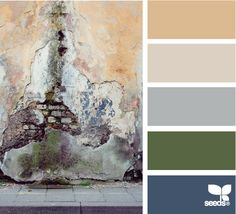 Eroded Hues: Cream Latte, Light Tan, Blue Grey, Moss Green and Faded Blue Jean Blue color palett, paint color, design seeds, color schemes, color pallets, accent colors, green tan cream color scheme