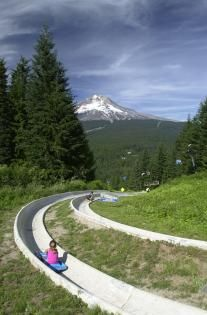 Check out the Northwest's only 1/2 mile dual Alpine Slide at #Skibowl this summer. The Adventure Park has over 20 attractions making it the perfect thing to do with the family this summer. www.skibowl.com