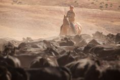 Host Ryan Van Duzer stares down a sea of Black Angus while participating in a cattle drive.  It looks romantic from afar, but up close, it's a stinky bustle of stubborn, frothing cows. Photograph by Robert Wright
