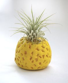 Pineapple Planter includes air plant by TreasuresofTerranora, $40.00