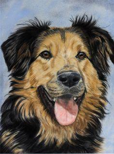 Dog by *Sarahharas07 on deviantART