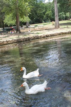 Landa Park in New Braunfels, TX