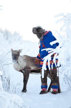 Sami in traditional costume. The Sami are the ipeople inhabiting the Arctic area of Sápmi.