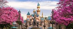 Sleeping Beauty's Castle in Disneyland is painted in our Metallic Paint Collection. A combination of custom metallic colors were created in 2005 for their 50th anniversary and were all protected with our MasterClear® protective topcoat.