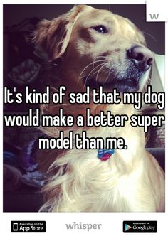 It's kind of sad that my dog would make a better super model than me.