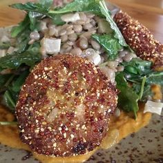 Quinoa crusted curry tuna cakes, lentils, kale, haricot vert, fennel ...