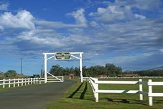 Parker Ranch - Kamuela, Hawaii