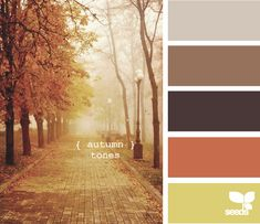 autumn tones