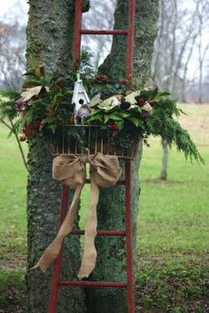 Rustic Christmas...ladder & pine display.