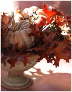 Thanksgiving Table Centerpiece Decorating Ideas Pumpkin and Flower, Photo  Thanksgiving Table Centerpiece Decorating Ideas Pumpkin and Flower Close up View.