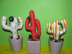 imaymanas@gmail.com cactus tela