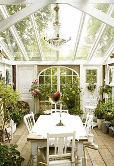 Sunroom with potted plants surrounding vintage table