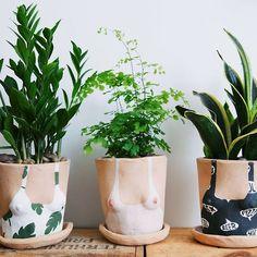 interior, idea, ceramic plants, plant ladi, ladi planter, planters, planten potj, ceramica, garden