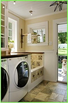 Dog bath in the laundry/mud room