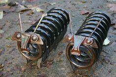 centiped pair 2006 | Flickr - Photo Sharing!