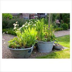 tin bath, galvan bucket, planters, old tins, garden