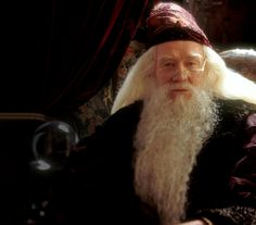 Dumbledore was chosen to represent the nucleus of a cell, because Dumbledore is the main source of all things within Hogwarts just like the nucleus is the control center of a cell.