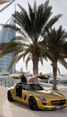 Wealth and Luxury In Dubai | ~LadyLuxury~