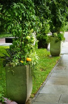 Container Garden: Vegetables at Chanticleer, 2011 | jardin potager | bauerngarten  | Flickr - Photo Sharing!