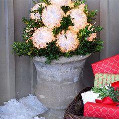 Outdoor Christmas Lighting.