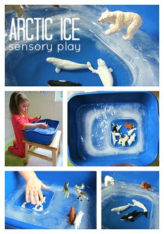 arctic ice sensory play--freeze a big tub of water, but stick something heavy in one side (so you create a hole in the ice).  fill hole with water, add toys & play!