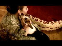 Beagle welcomes home her soldier mom