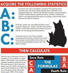 How to calculate your shelter's live release rate from the No Kill Advocacy Center