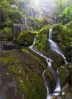 Place of a Thousand Drips....waterfall near Gatlinburg, TN