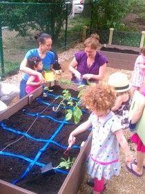 cool kids garden