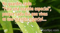 No guardes nada para una ocasión especial, porque cada día que vivas es una ocasión especial