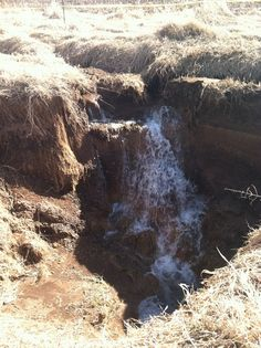 Sinkhole swallows creek :: Prophecy Dude