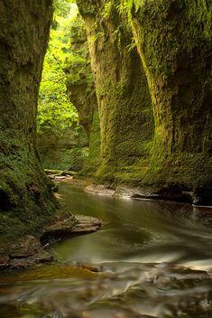 Finnich Glen by Ann-Marie Westwood on 500px The lovely Finnich Glen near Loch Lomond Scotland.
