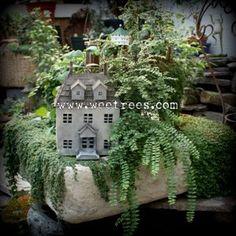 sweet fairi, fairi garden, faeri garden, mini garden, favorit fairi