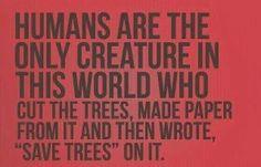 It's true. :)