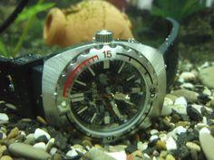 Amphibia 1967 underwater