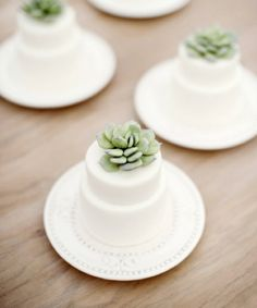 mini succulent wedding cakes - such a cute idea!
