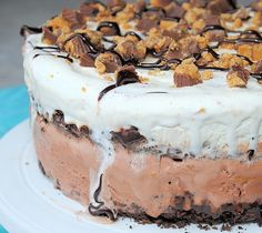 Peanut Butter and Chocolate Ice Cream Cake - Crazy Little Projects