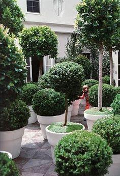 Kelly Wearstler's topiary garden.