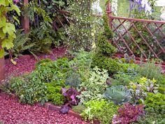 Trellis Fencing Useful for Garden Dividers