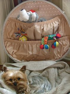 Vintage suitcase as dog bed.