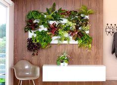 decor, living walls, idea, green, plants