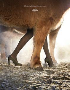 Metamorphosis, an Hermes Story. Pumps in suede goatskin and calfskin. Hermès 2014 autumn-winter campaign. #hermes #fashion