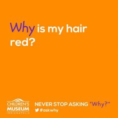 NEVER STOP ASKING WHY - Why is my haie red? by childrensmuseum.org: Hair color is the result of many genes working together.  These genes have the instructions to make pigments, called melanin.  There are two main types of melanin: eumelanin—a brown-black color—and phaeomelanin—a red-brown color... #Science #Kids #Red_Hair