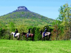 Bregman Stables and Trail Riding