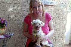 Craigslist Phoenix Dog Adoption