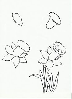 draw, spring flowers, flower art, flower crafts, doodle and zentangles learning, art class, daffodils, art projects, third grade art