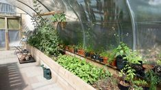 FARM:shop, a once derelict London shop transformed into the world's first urban farming hub.   #urbanfarming #hydroponics
