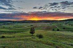 360 days of sun await you in in Burgenland, Austria #austria #burgenland #nature #green #meadow #sunset #summer