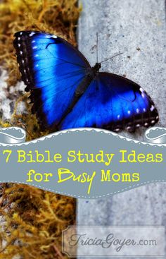 If you want time to study God's Word but don't find it possible with little ones, here are seven ideas for spending time with God.